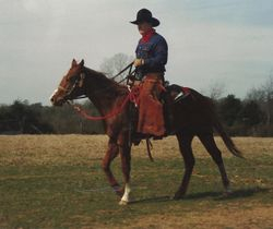 Johnny Seay riding a new colt. C.M. Russell was the best horse I ever had. I was braking him at the time of this photo.
