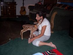 My wife Star and one of the Fawns she has raised. They stay inthe house for a few weeks.