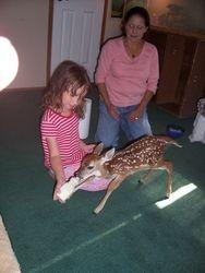 Star and Micheala feeding baby deer.
