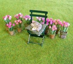 Sleeping cat with tulips