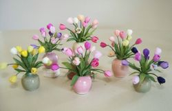 An assortment of tulips in vases