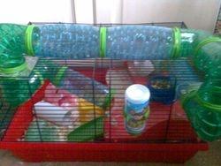 Topsy Family Cage