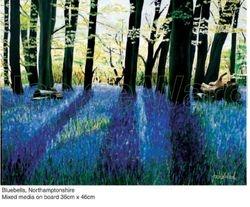 Bluebell Wood, Northamptonshire
