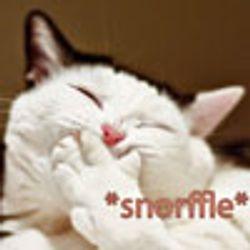 Snorffle Kitty