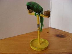 Barton Parrot