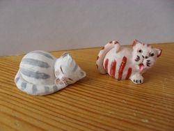 Colourbox cats