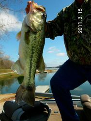6 lb 9 oz Bass