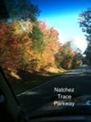 The Natchez Parkway