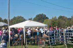 Amish Auction