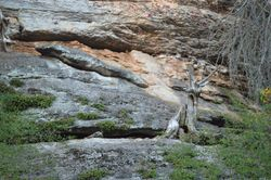 Lawrence County Rocks