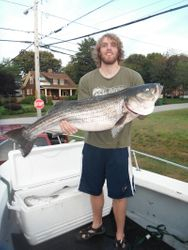 """Even at 6' 8"""" that fish still looks huge"""