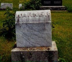 David Beaver Harker , Maplewood Cemetery , Mayday Kansas