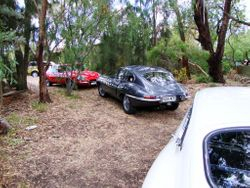 Cars parked in Vin's backyard