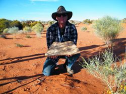 Aboriginal Grinding Plate made from a flat rock.