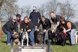 DogStar Flyball Team
