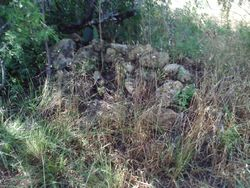 Rock Pile at Coleman site