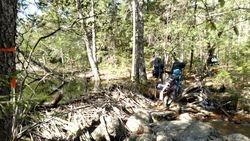 Hike from Sawyer Pond