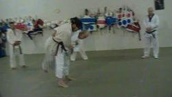 fargo Judo Vern Borgen