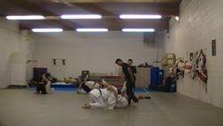 Mike Schmidt MMA