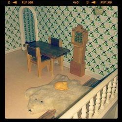Bearskin rug, ginger cat and glue marks