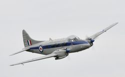 de Havilland DH104 Dove