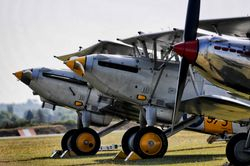 Hawker Fury, Hind