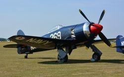 Hawker Sea Fury.
