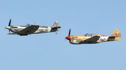Spitfire and Curtiss P-40F