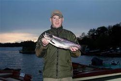 winning trout