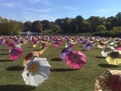 Hospice Umbrellas at Lake Winthrop
