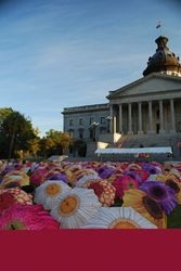 Life Blooms Eternally Hospice Memorial