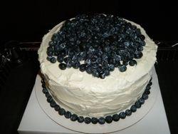 Vanilla Cake w/ Fresh Blueberries