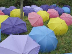 Umbrellas, Barrington Court