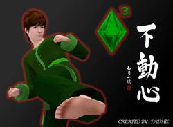 kung fu sam