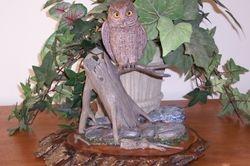 Min. Screech Owl
