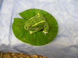 Leopard Frog Top View