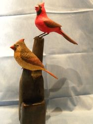 Pair of Norther Cardinals