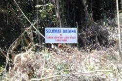 Papan tanda