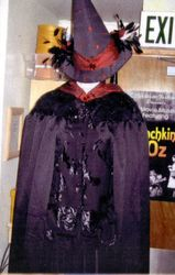 Witch of the West's Costume and Hat.