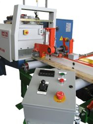 Rip Saw Infeed System
