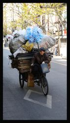 Shanghai Delivery Man