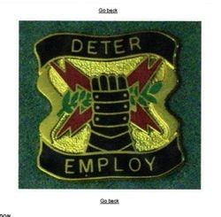 Stratcom Unit Crest