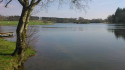 Lake from Temple
