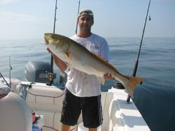 Bull red off shore