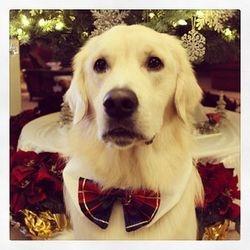 Merry Christmas!! Love, Samson