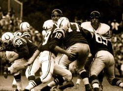 Colts & Bears 1960