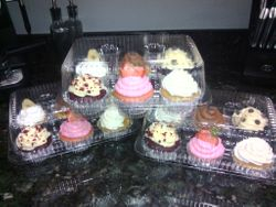 Variety of Assorted Cupcakes