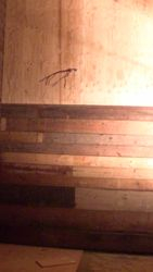 New Interiro Tack Room Finshing
