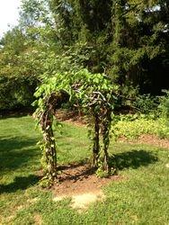 Garden Bower