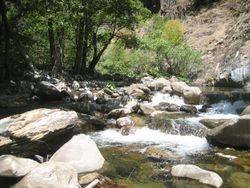 My American River Claim